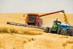 This year in Kazakhstan collected 30 million tons of grain