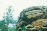 thumb_1249646467_guide.jpg